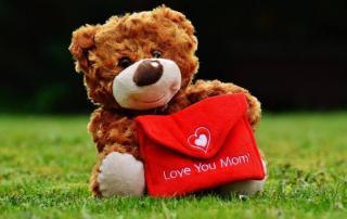 teddy 1338887